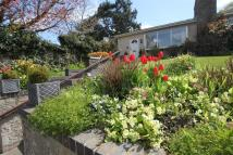 3 bed Bungalow for sale in Maplewell Road...