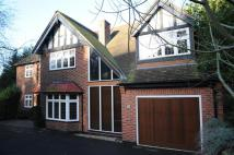 Detached home for sale in Cyprus Road...