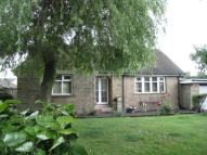 house to rent in MAIN STREET, COTTINGLEY...