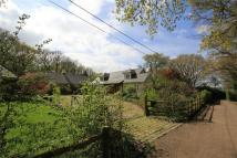 4 bed Detached house in Willow Road, Whitstable...