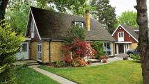 CROWTHORNE property for sale