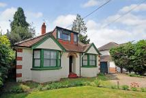 Detached Bungalow for sale in Winnersh, Wokingham...