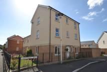 4 bed house to rent in Kittiwake Drive...