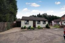 Detached Bungalow for sale in Lexden - Colchester, CO3