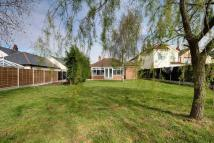 3 bedroom Detached Bungalow for sale in West Colchester