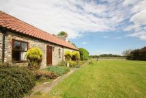 Cottage to rent in Mordon Moor Cottage...