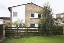 Tindale Green Detached property to rent