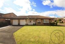 3 bedroom Detached Bungalow for sale in Acle Meadows...