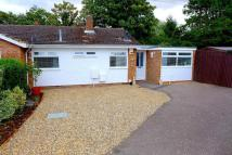 Bungalow for sale in Foster Road, Harlington...
