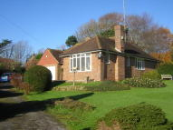 3 bedroom Detached Bungalow to rent in Sloe Lane, Alfriston...