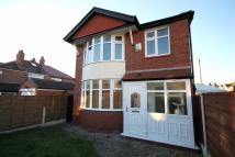 Haughton Drive semi detached house to rent