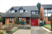 3 bedroom semi detached house to rent in BYARDS GREEN, Potton...