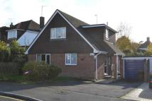 Detached property to rent in Tenterden, TN30