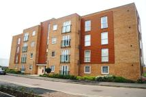Burnmoor Street Apartment to rent