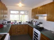 8 bed house in 17 Charnwood Street, ,