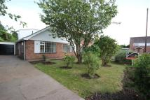 Allington Garden Detached Bungalow for sale