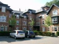 Acresfield Road Apartment to rent