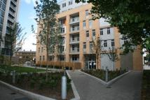2 bedroom new Apartment in 602 Coral Apartments 6...