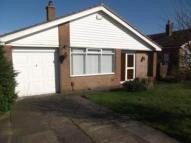 Lyndhurst Ave Bungalow to rent