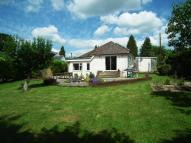 MEDSTEAD Detached Bungalow for sale