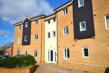 2 bed Apartment in Briar Road Hethersett...