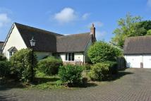 Detached Bungalow for sale in East Bergholt