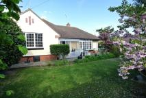 5 bed Detached Bungalow in Newton Road, Dovercourt...