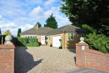 Detached Bungalow in Brantham