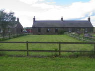 3 bed Semi-Detached Bungalow to rent in Haughs of Kinnaird...
