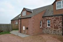 Cottage to rent in West Mains of Auchmithie...