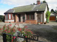 3 bed Detached house in Argyll Street, Brechin...