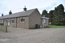 3 bed semi detached house to rent in Easter Braikie, Arbroath...