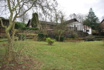 Detached Bungalow in Broomhill Road...