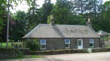 3 bedroom Detached property in Balkeerie, Eassie...