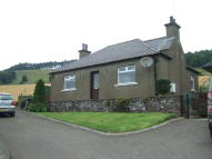 Detached Bungalow to rent in Dunnichen, By Forfar...