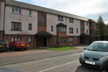 Apartment to rent in Williamson Court...