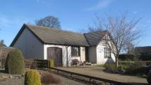 Bungalow to rent in Drimmie Place, Letham...
