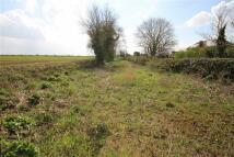 Land for sale in Chapel Lane, Little Hale...
