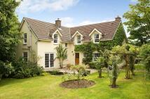 Cottage in Rose Cottage, Ceciliford...