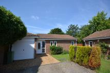 Detached Bungalow in William Smith Close...
