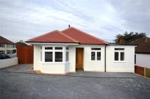 Colchester Road Bungalow for sale