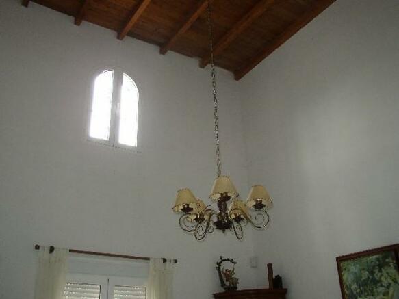 Dining ceiling Nº1