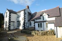 Detached home for sale in Church Road, Minera...