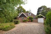 3 bedroom Detached Bungalow for sale in Exclusive 'THICKET...
