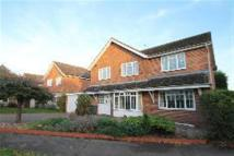 Detached home to rent in SHARNBROOK