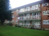 Flat to rent in Springbank...