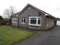 3 bed Detached Bungalow to rent in River Crescent, Dundee...