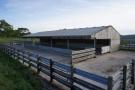lot 3 cattle shed