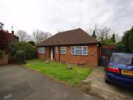 Detached Bungalow to rent in Poplar Close, Colnbrook...