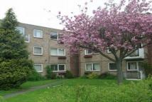 3 bedroom Apartment to rent in Blenheim Road...